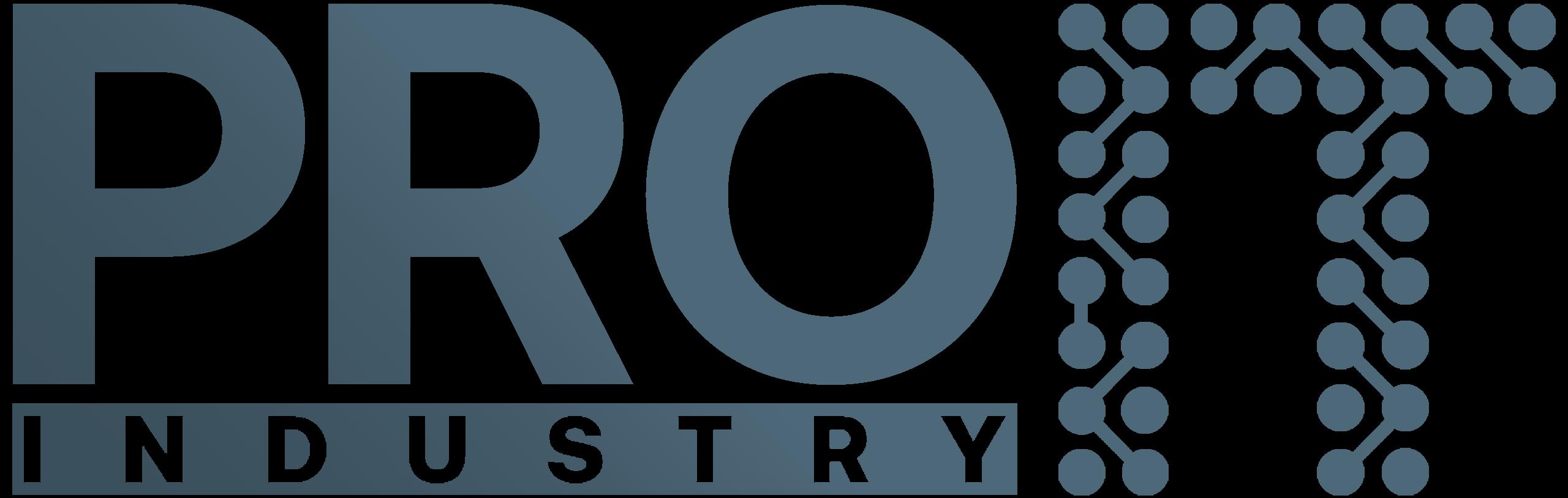 pro it logo mare petrol